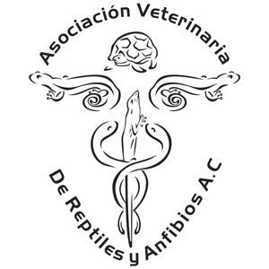 Asociación Veterinaria de Reptiles y Anfibios